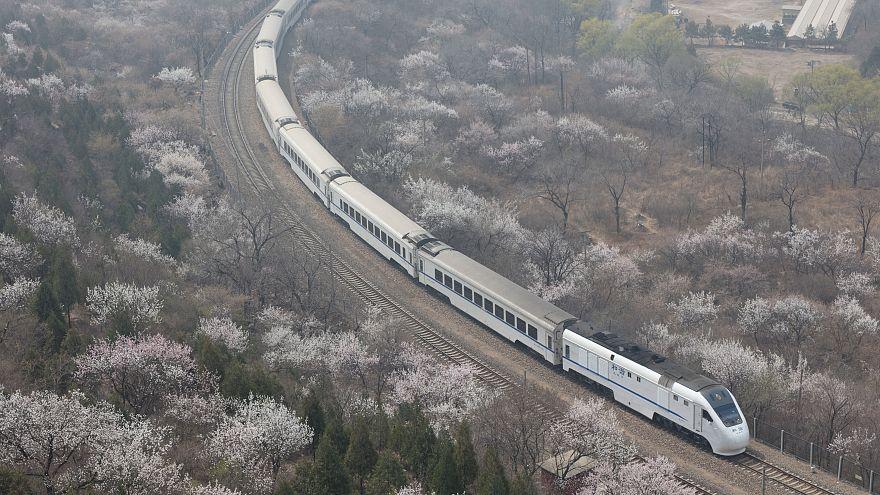 Οι ανθισμένες κερασιές της Κίνας