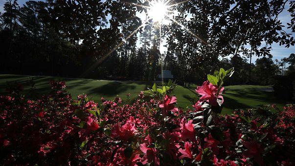 صحة: 5 طرق للوقاية من الإصابة بحساسية فصل الربيع