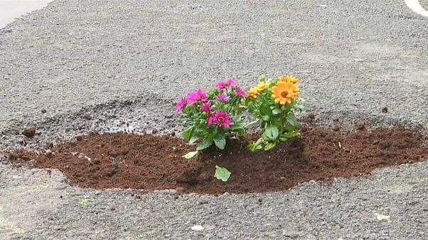 Flores nos buracos das ruas de Bruxelas