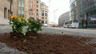 Otoyollarda bozulan asfalta çiçek ekiyor