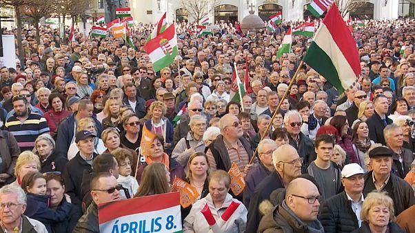 Macaristan'da seçim heyecanı
