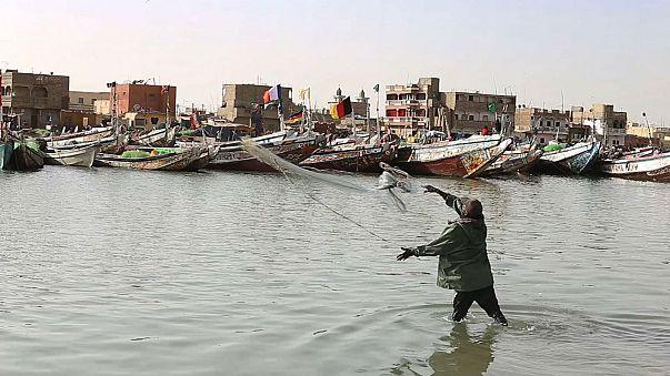 Senegal's fishermen say European overfishing is crippling them