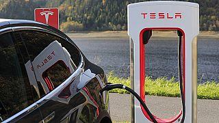 Zorlu Holding Tesla'ya rakip olacak