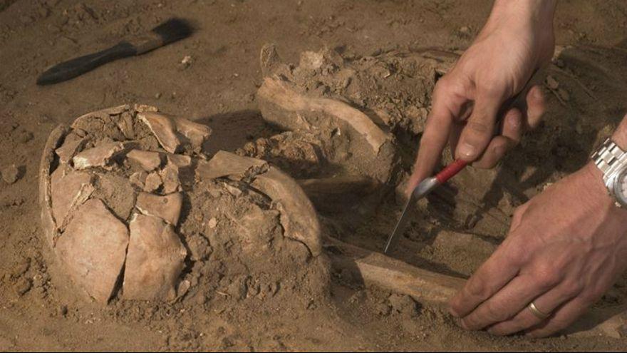 کشف بقایای ۸۵ هزار ساله از گونه «هوموساپین» در عربستان سعودی