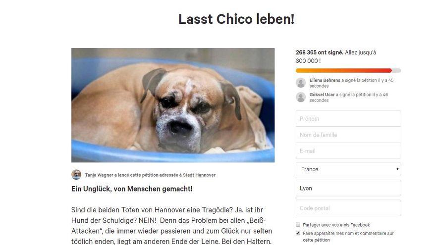 """""""Lasst Chico leben"""" fordern bisher fast 270.000 Menschen"""