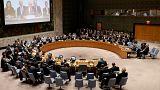 روسيا تستخدم الفيتو ضد قرار أممي بشأن هجوم دوما