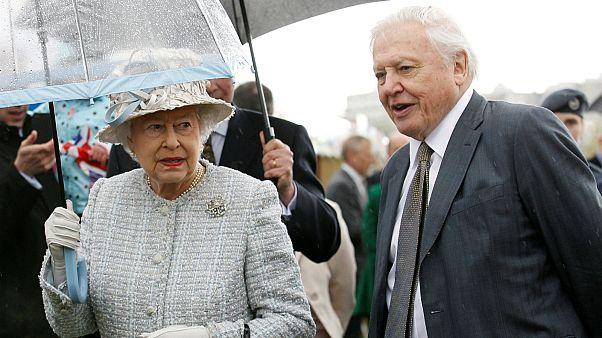 """""""كوكب الملكة الأخضر"""" سيظهر جانباً آخر من شخصية الملكة إليزابيث"""