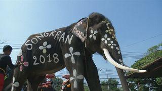 Thailand: Wilde Wasserschlacht mit Elefanten