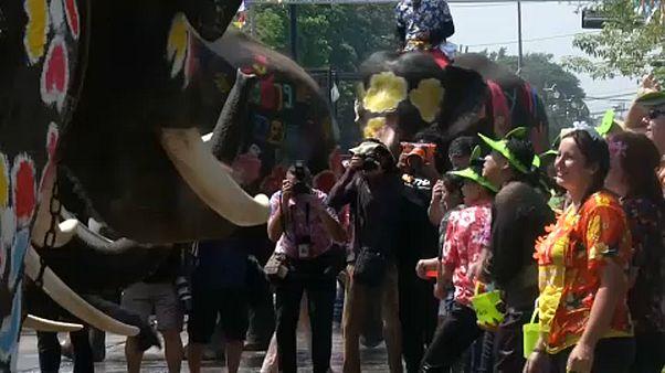 Ιερά μπουγελώματα στην Ταϊλάνδη