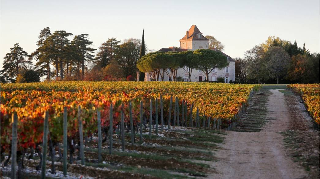 We tried agritourism and a Malbec wine tour in southwest France