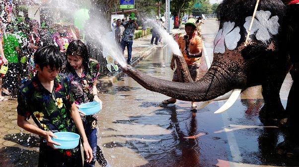 Água une pessoas e elefantes no festival de Ayutthaya