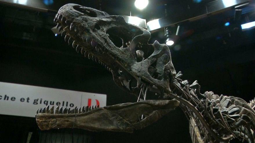 Achat de dinosaures