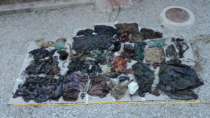 Questa è la plastica che ha ucciso una balena: è stata trovata nel suo stomaco