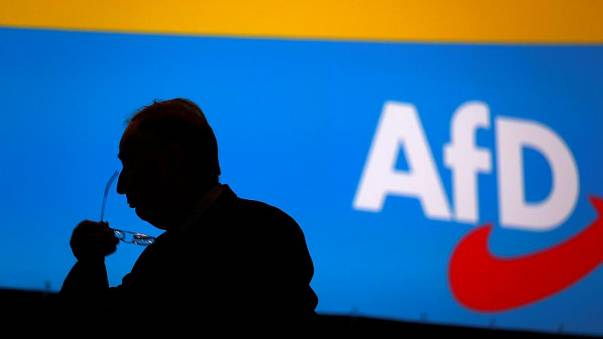 'Little enquiry' letter by anti-immigrant AfD links severe disability with immigration