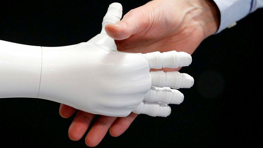 Robot rights violate human rights, experts warn EU