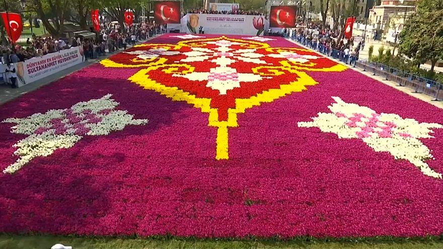Dünyanın en büyük lale halısı İstanbul Lale Festivali'nde