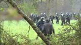 """اشتباكات بين الشرطة الفرنسية والمعارضين لمشروع مطار """"نوتردام دي لاند"""""""