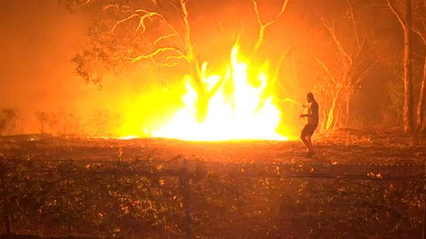 Incêndio de origem criminosa devasta 2.500 hectares