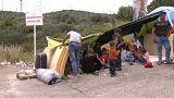 Yunanistan'daki mülteciler ülkelerine dönmek istiyor