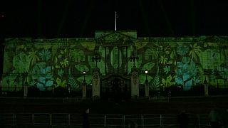 Букингемский дворец в цветах тропического леса