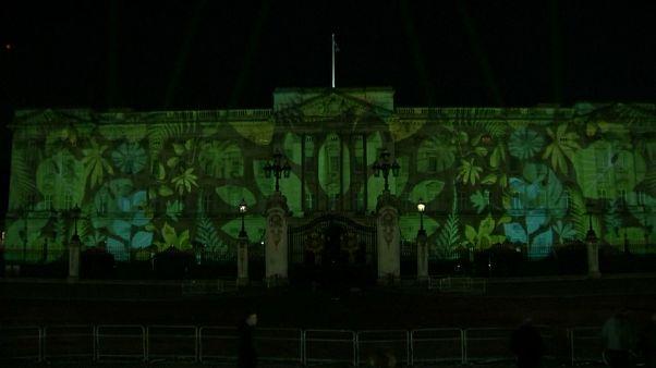 لماذا تحول قصر باكنغهام الى اللون الأخضر؟