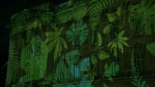 Buckingham palace en mode tropical