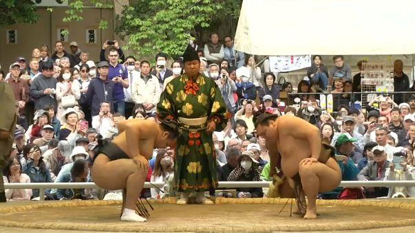 Scandal hit sumo wrestlers bounce back