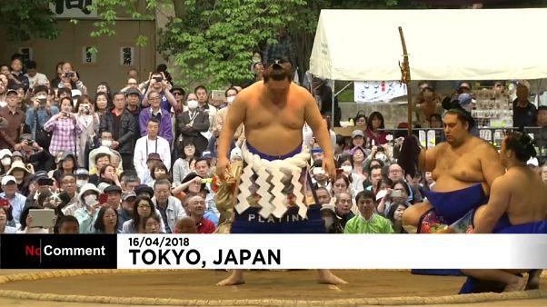 Sumo: Todos os caminhos vão dar a Tóquio