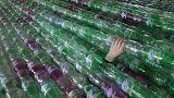 Uma enzima que come plástico