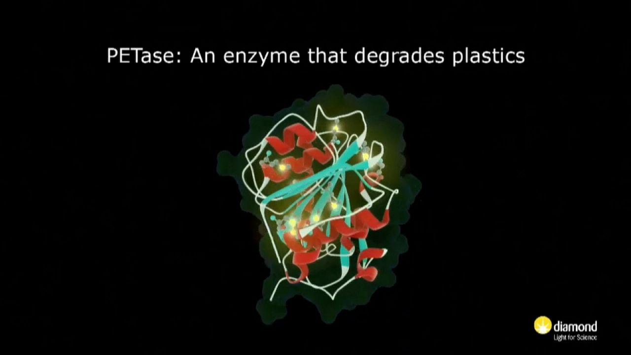 """Wissenschaft: Ein Enzym, das Plastik """"fressen"""" kann"""