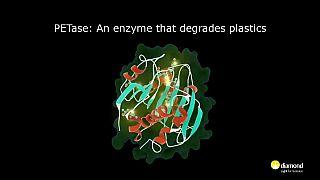 Crean accidentalmente una enzima mutante que come plástico