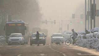 دراسة: وفاة أكثر من ستة ملايين شخص بسبب تلوث الهواء