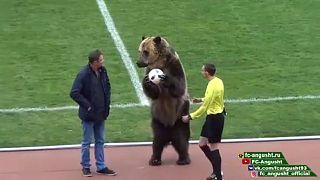 Bear helps kick off Russian football match