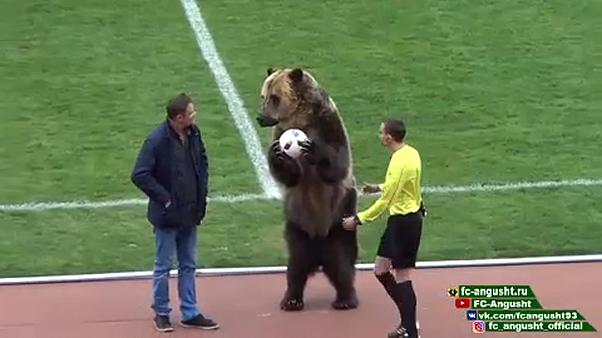 Bear helps kick off Russian football match