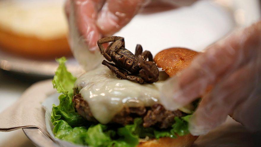 شاهد: شطيرة البرغر بالعنكبوت المحمص