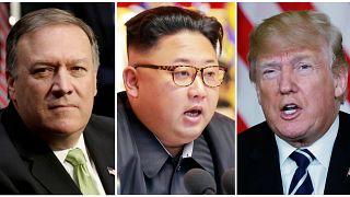 CIA director visits North Korea