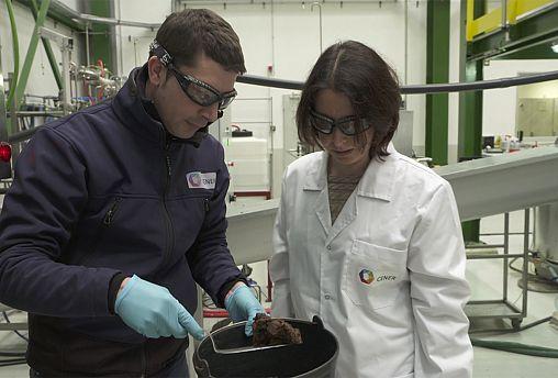 Investigadores europeus criam biocombustível a partir de palha