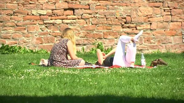 Locals sunbathing in Frankfurt