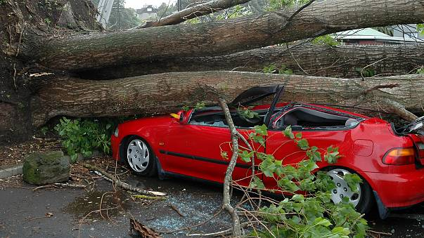 Copernicus to provide new windstorm data resources for the insurance sector