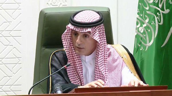 """Siria, l'Arabia Saudita """"disponibile a inviare truppe sul campo""""."""