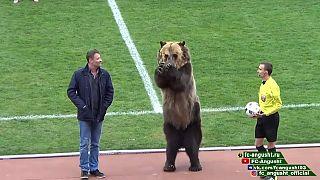 Un club ruso lleva a un oso para animar antes del partido