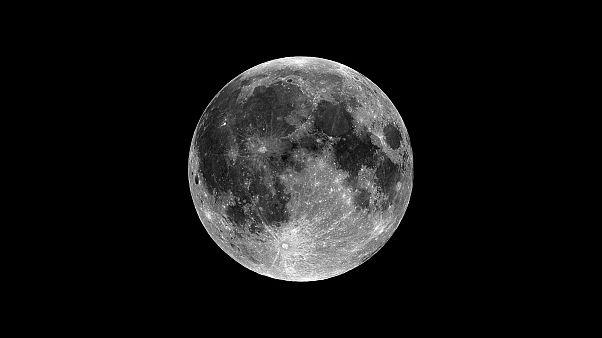 Vos selfies sur la Lune pour les 50 ans d'Apollo 11