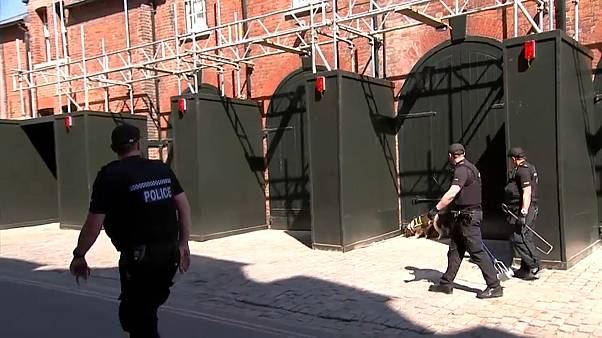 Sniffer dogs deployed in Windsor as police beefed up for Royal wedding