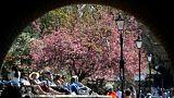 اروپا امسال گرمترین ماه آوریل در ۷۰ سال گذشته را تجربه میکند