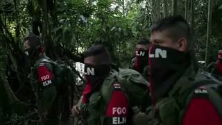 Ecuadornak elege lett a kolumbiai gerillákból
