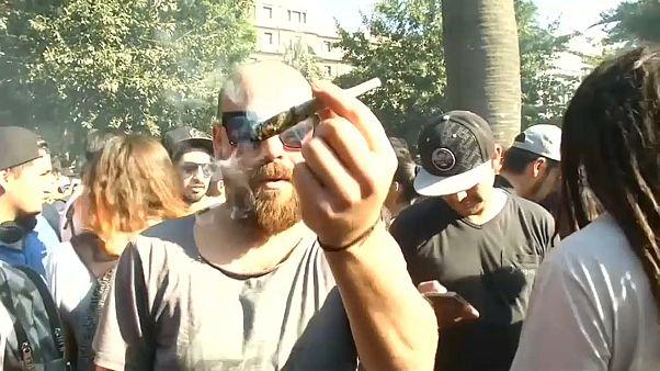 México recebe festival da marijuana