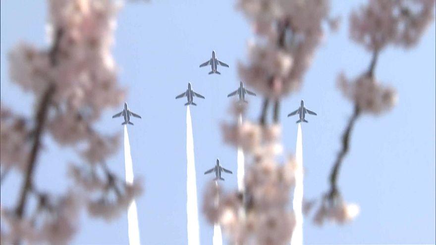 جانب من احتفالات اليابان بعيد زهر الكرز