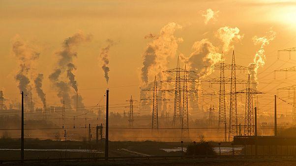 في يوم الأرض: إنجيليون يقفون في وجه تغيرات المناخ
