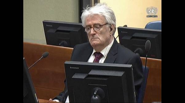 Radovan Karadzic asks UN Judges to overturn genocide conviction