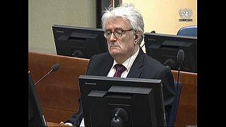 Recurso de Karadzic dá entrada em Haia